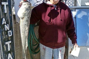 Red Drum 7-lbs 26-inch