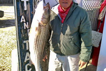 "Striped Bass 39"" 21.04 lbs"